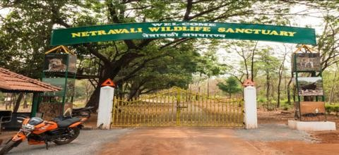 Netravali wildlife sanctuary