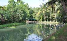 Raut Farm Resort