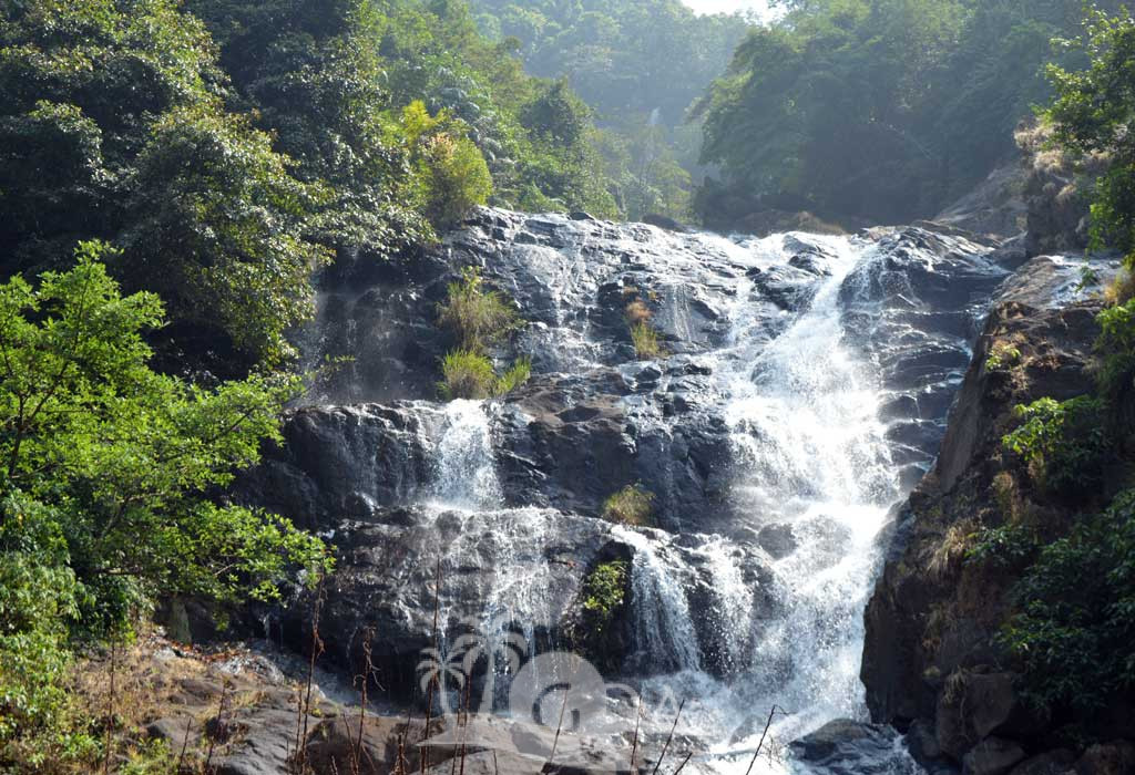 4. Tambadi Surla Waterfalls