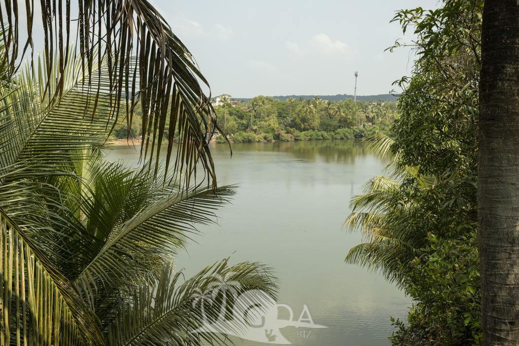 Baga Lake View Villa Goa