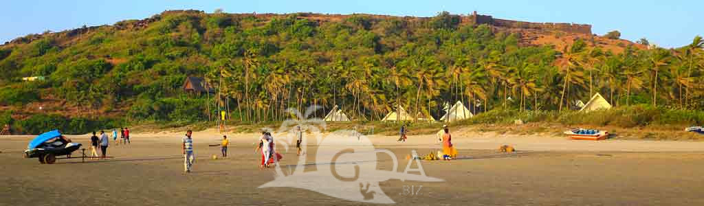 Beach Fort Goa